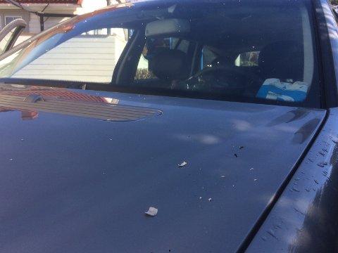 ASKEFLAK: Dette synet møtte Thomas Angel til morges når han skulle ut på tur med hunden sin, bilen var dekket av askeflak.