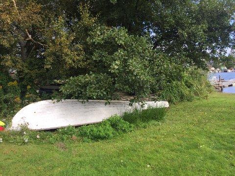 NÅ KAN DU LEVERE: Langs kysten ligger det gamle båter som ikke lenger er i bruk, og som kan ende opp som vrak og foruresing i naturen. Nå kan båter leveres til gjenvinning på Vesars gjenvinningsstasjoner.