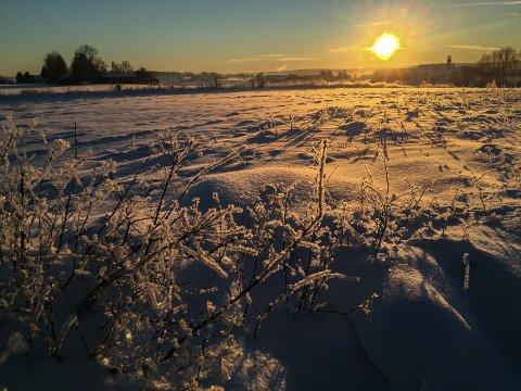 STORE LOKALE FORSKJELLER: Det blir ikke så kaldt til uka som januardagen i 2016 siden, da dette bildet ble tatt i Slagendalen. 20 kuldegrader trakk nedover dalen, mot Kilen, og ga tynnkledde skigåere nærmest kuldesjokk. Noen hundre meter unna, på Eik, var det bare 10 minusgrader. De lokale forskjellene i fylket er derfor svært store med værtypen som nærmer seg til helgen.