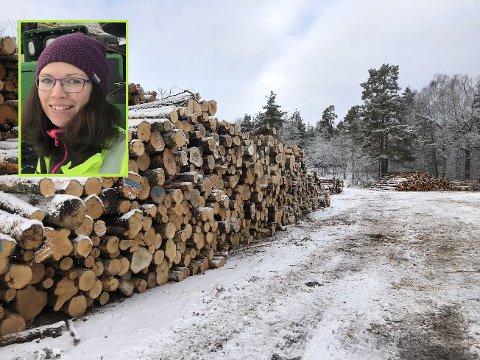 TØMMERHOGGER: Linn Merete Vatnås Bråten har fått kritiske kommentarer og mange spørsmål fra turgåerne i Søndre Slagen. – Men de fleste smiler når de går forbi, sier den 32 år gamle skogsmaskinføreren.