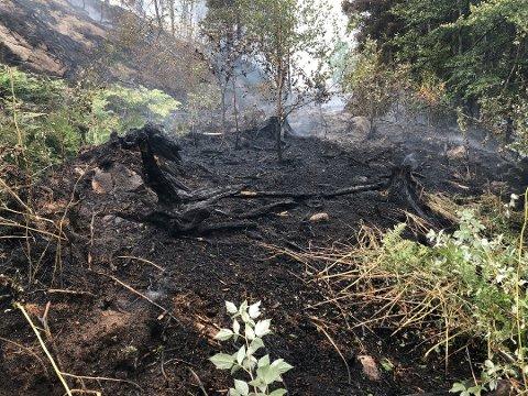 Fredag morgen var brannvesenet fremdeles i Smørfatåsen i Kodal, rett nordøst for Goksjø.