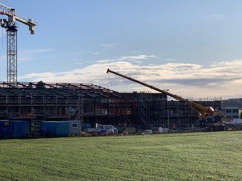 IKKE FLYTTET: Denne mobilkrana veltet mandag over et bygg til prosjektet Signaturhagen på Borgheim. Omfanget av skadene vet de først når krana blir flyttet.