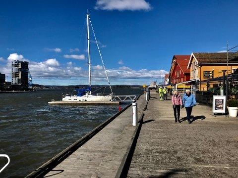 KJØLIG: Sur vind fra nord ødela idyllen på Brygga mandag formiddag. Men fra og med i morgen tirsdag skal det bli en mer «vennlig» vind.