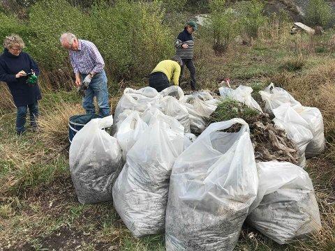 SØPPELDUGNAD: – 25 nye poser samlet i Brevik i dag - nesten 60 i fjor på samme sted. Det er utrolige mengder med plast fra landbruket som ligger i hauger, sier Jan Helge Fosse.