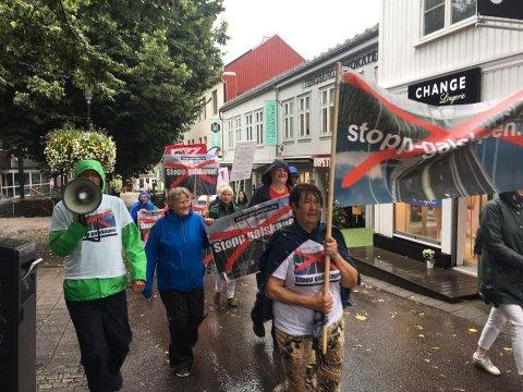 Demonstrasjon mot gigantveiprosjektet over Smørberg lørdag 10. august