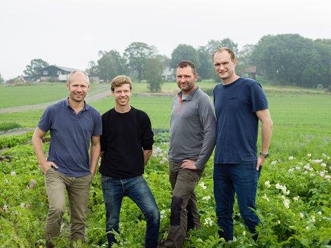 TO PAR BRØDRE: Åsmund og Lars Bjertnæs og Henrik og Øystein Hoel gjør suksess med poteter og salat gjennom firmaet Bjertnæs & Hoel.