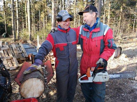 SKOGVANTE: Både Olav Øystese (91) og hans ni år yngre kompis Øistein Iversen (t.h.) er skogvante. – Vi har jobbet sammen på denne måten i snart 30 år, forteller Iversen.