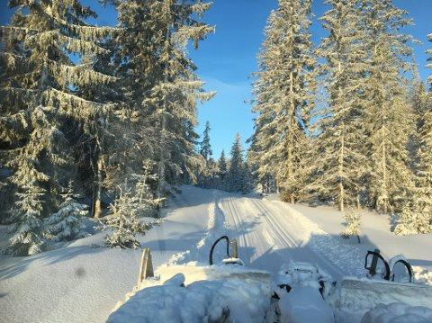 NYDELIGE FORHOLD: Slik ser det ut i Vestskauen i Sande. De kan skilte med 74 centimeter snø og skiløyper til etter påske.