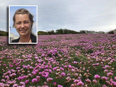 WOW! Dette synet møtte Heidi Karoline Storm da hun gikk tur med hunden i Moutmarka på Tjøme i helgen.