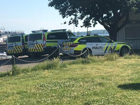 Flere politipatruljer er på stedet og bistår.