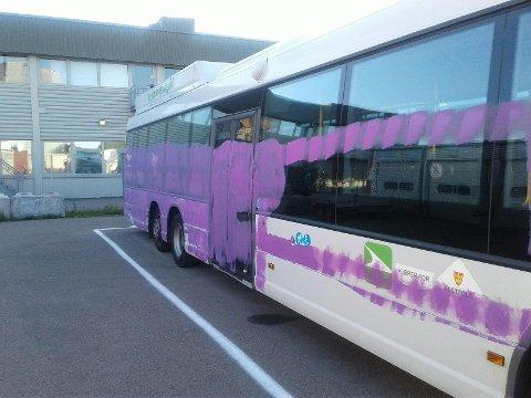 HÆRVERK: Noen har tagget flere busser til unibuss. Politiet har sikret viktige bevis til en straffesak.