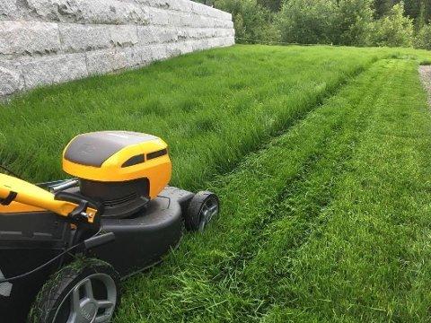 FORBUDT: Det er ikke lov å klippe plenen med en støyende gressklipper på søndager eller helligdager, og du risikerer bøter om du gir blaffen.