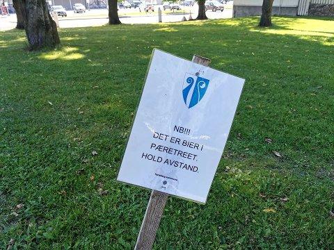 IKKE STIKK INNOM: Meldingen på skiltet er klar. Da gjelder det ikke å la seg friste og gå bort til treet med biene.