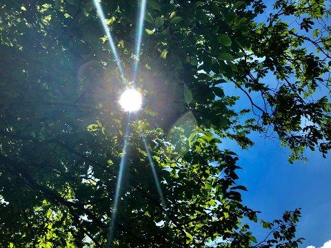 SOL, SOL, SOL: Det meldes om knall september-vær denne helgen.