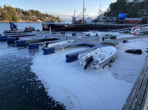 HVIT SJØ: Bilde er tatt i båthavna mandag.