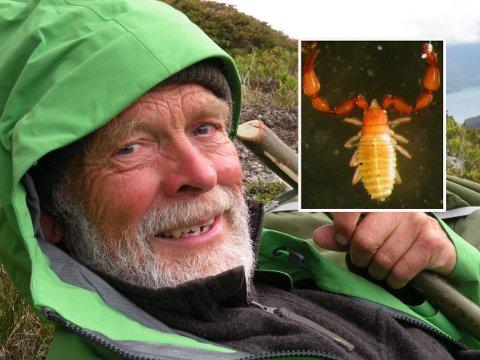 INSEKTSFORSKER: Arne Fjellberg fant en sjelden art for første gang i Norge.
