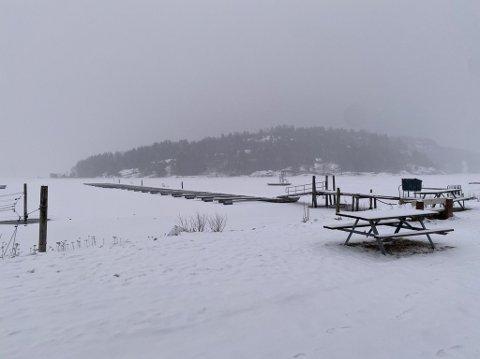 SNØ: Mandag ettermiddag har det lavet ned. Og mer snø skal det bli utover uka. Slik ser det ut på Storevahr i Stokke.