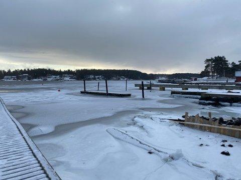 KALDT: Kulden har skapt is på fjorden. Her på Duken.