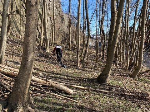 VÅRSTELL: Den lille skogen mellom Solkilen-blokkene og Kilden kino trengte en ryddesjau.