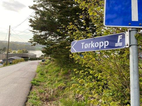 SKUDD ELLER SMELL: Politiet fikk melding om at det var hørt et smell i dette området på Nøtterøy tirsdag.