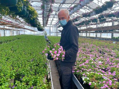 VÅRSESONG: Hassum Gård & Gartneri ligger mellom Tønsberg og Åsgårdstrand. De produserer planter og blomster for sluttmarkedet. Hans-Otto Hassums gartneri er for tiden fylt til randen av vakre vårblomster.