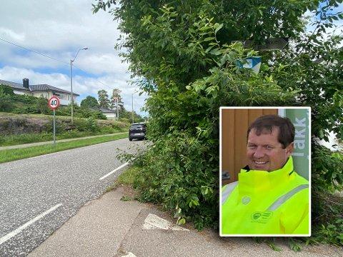 ESER UT: Slik ser det ut mange steder nå. –Dette kan være trafikkfarlig, sier Knut Bartho Hansen i Tønsberg kommune.