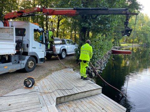 MÅTTE TENKE NYTT: Vanningsforbudet til Tønsberg kommune gjelder alle, også kommunen selv. For å unngå at plantene i bysegl-bede skulle dø, måtte de tenke nytt.