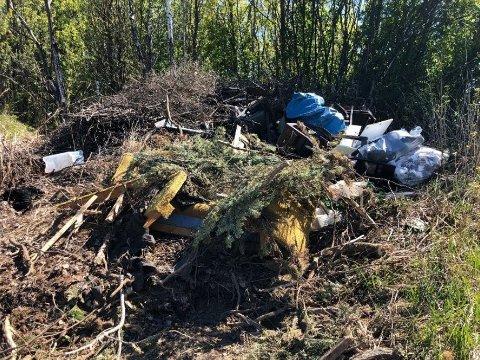 JUNI 2020: Over et år etter første henstilling om opprydning ser det slik ut i det aktuelle skogholtet i Østre Toten. Nå håper kommunen å få bukt med problemet gjennom et formelt pålegg og varsel om tvangsmulkt.