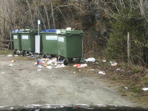 FLYTER OVER: Nok en gang flyter det over med søppel på returpunktet ved Fylkesveg 191 i Mosvik.