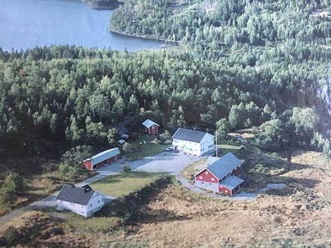 Siste stopp: Gisletveit har den lengste veien til Vegårshei Skule. Skolebussen stopper på tunet på gården. Foto: Privat