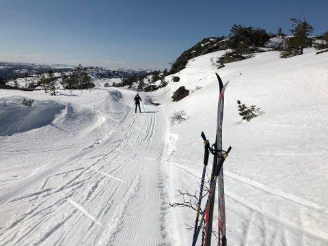 Slik så det ut nær toppen av Storliheia ved Hillestad skjærtorsdag. Foto: Øystein K. Darbo