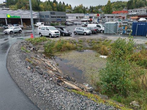 Siste ord er ikke sagt om denne dammen. Tvedestrand kommune må snart ta stilling til en klage fra Naturvernforbundet. Arkivfoto