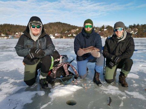 Ole Thomas Wiik fra Dypvåg og Sondre Rønning og Henrik Svendsen fra Arendal fikk fisk!