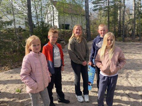 Savn: Mange av barna i Djuptjennhaugen savner en egen lekeplass. (f.v) Charlotte  6,5 år, Matheo på snart 9 år, Selma 11 år, Asbjørn 11 år og Anna Regine på 10 år.