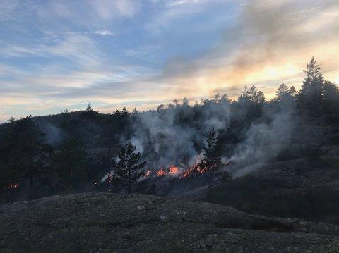 Det brant i et område på to mål på Olstadfjellet i natt.