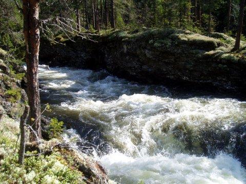 Medlemmer og venner av Naturvernforbundet i Oppland, samlet til jubileumsfeiring på Haugseter fjellstue i Øystre Slidre, tar til orde i en uttalesle fra samlinga at Vinda med sine verdier og kvaliteter bevares for framtidige generasjoner.