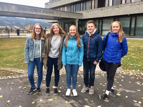 Ungdomsrådet i Nord-Aurdal består av Sigrid G. Ingvaldsen (f.v.), Karoline Sveen, Emilie Ø. Sæthre, Emil I. Akervold og Marie T. Halden.