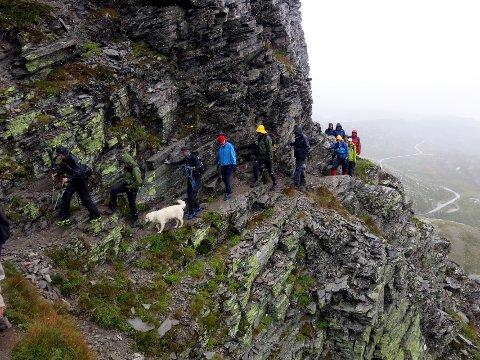 Sti til Bitihorn: Det er flere muligheter for å komme seg til opp til toppen av Bitihorn. Arkivfoto: Tor Erik Grønolen
