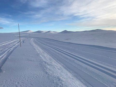 - Da ligger det 9 km med skiløyper klare til bruk på valdresflya med utganspunkt gamle herberget. Det er gode forhold og kald fin snø. Været kl 12.20: Liten bris, -4 grader og skyet vær med en solgløtt innimellom, skriver beitolangrenn.no.