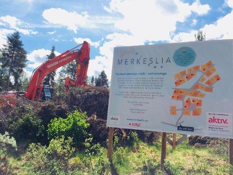 """Hyttedrømmen midt i solrenninga: I """"Makeløse Merkeslia"""" starter byggingen denne uka."""