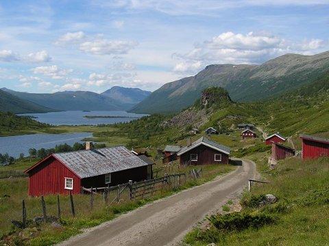 Stølsvidda ligg på fjellet mellom Hemsedal og Valdres og er eit av dei ni nye utvalde kulturlandskapa i 2018. Foto: Kari Stensgaard.
