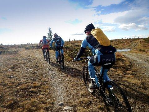 Langsua rundt: Det jobbes for å kunne få til et sammenhengende sykkeltilbud rundt hele Langsua.