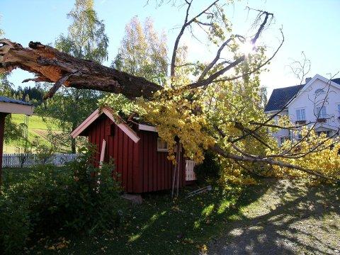 Kraftig vind: Beredskapskoordinator i Vang kommune, Simen Dølgaard, oppfordrer folk til å sikre seg mot kraftig vind fredag og lørdag.