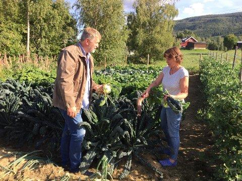 Plenen din kan en dag bli en del av den totale matvareberedskapen for en husstand, sier Barbro og Anders Nordrum.