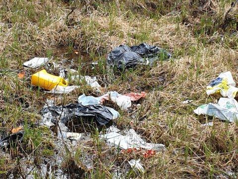 Søppel: Det er ikke første gang det ser slik ut, skriver Liv D. Klevenberg, som har tatt dette bildet.