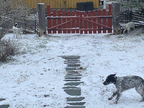 Leira torsdag morgen. Snøen ligger på marka mens vegbanen er våt.