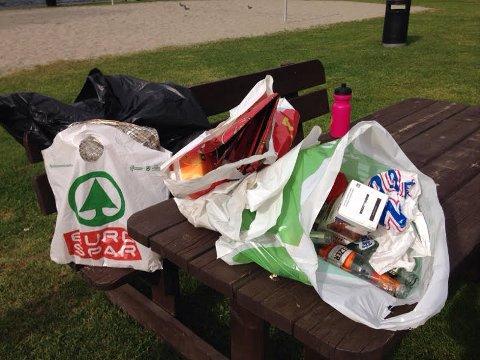 SØPPEL: Elisabeth Clason Sanne sin fangst etter en runde med søppelplukking i parken.