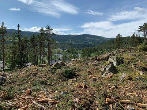 HER KAN DU BYGGE: Skogen er alt hogd, og i disse dager ryddes området som skal huse det nye boligområdet i Ryfoss. 21 nye tomter, samt fire i tilknytning til det eksisterende boligfeltet, vil etter hvert bli etablert her.