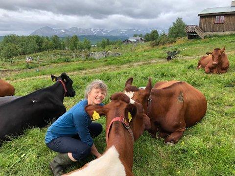 På stølen: NBS-leiar Kjersti Hoff har også i sommar vore på stølen til Sigbjørn Ødegaard og Johanna Fuglesteg - med 20 mjølkekyr.