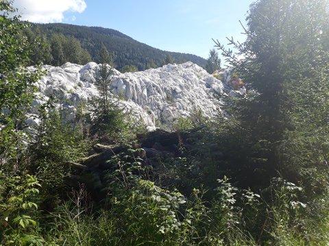 Plastberg: Slik ser det ut i Skaffarplassvegen i Etnedal. - Haugen med landbruksplast medfører både vond lukt og flueinvasjon, forteller innsenderen av bildet.